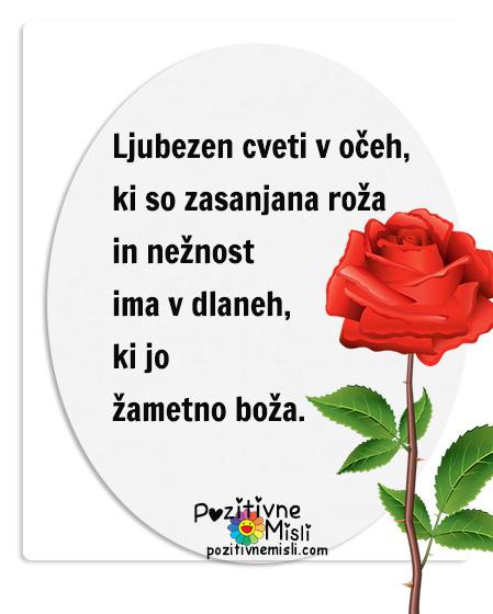 Ljubezen - ljubezenski verzi - nastja klevze- Ljubezen cveti v očeh, ki so zasanjana roža in nežnost ima v dlaneh, ki jo žametno boža.